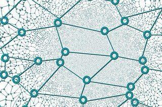 webove siete